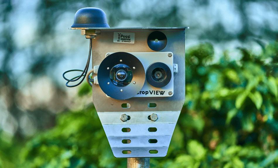 Monitoramento do Campo